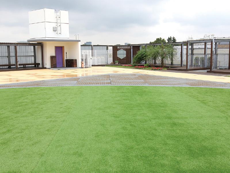 昼休みや放課後に集いの場となる人工芝の屋上庭園